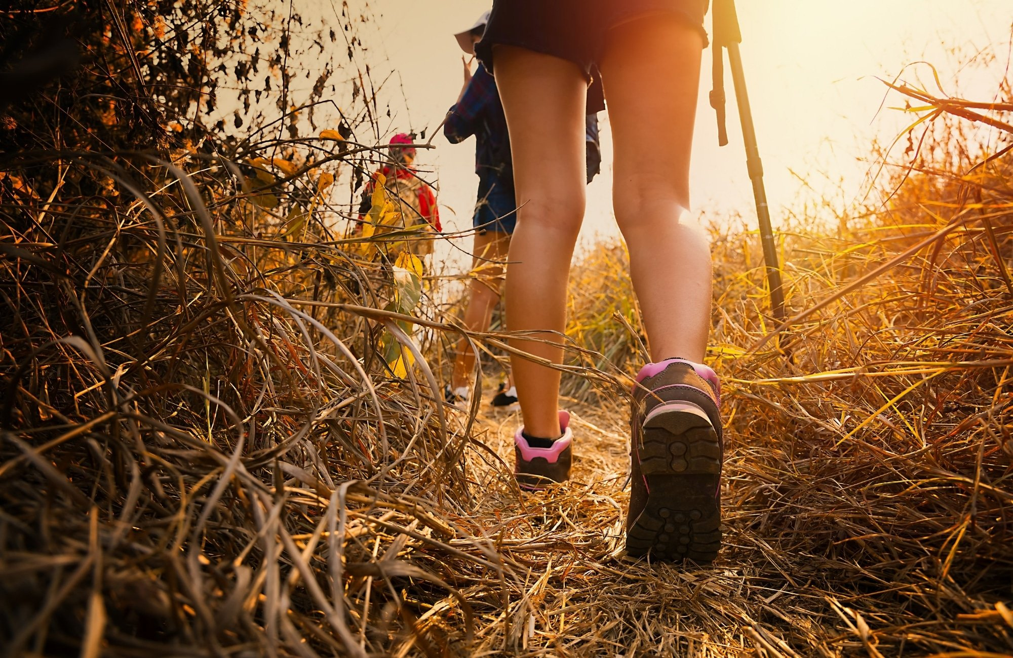 Go for a hike (or an energetic walk)