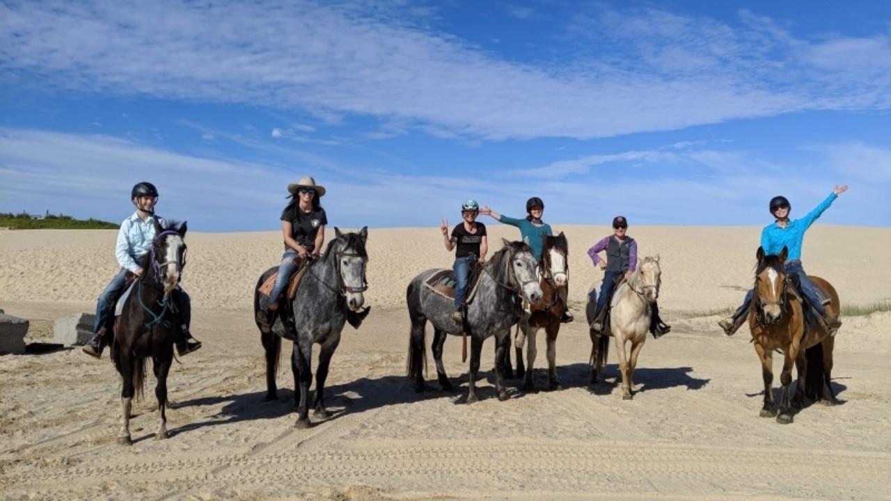 Sahara Trails Horse Riding